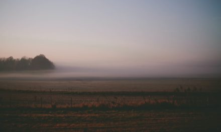 Feeling Shunned After Leaving Mormonism