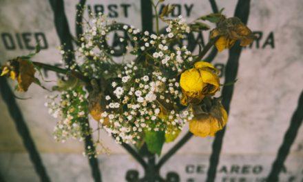 私たちの死と復活との間には何が起こりますか?