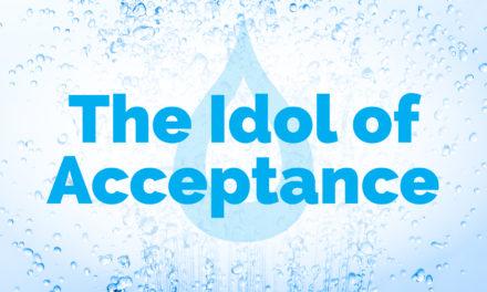 L'idole de l'acceptation | Le nettoyage
