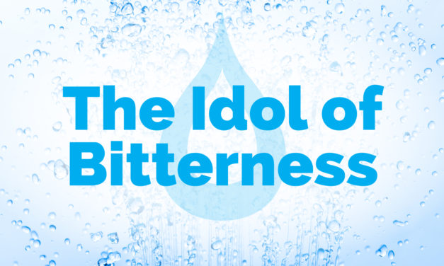 The Idol of Bitterness | The Cleanse