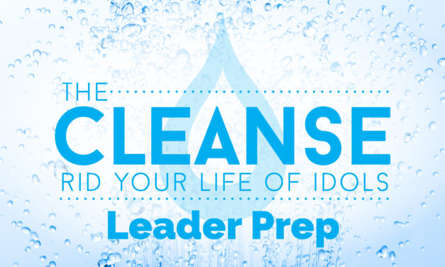 Leader Prep | The Cleanse