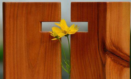 Top 5 Bible Verses on Hope