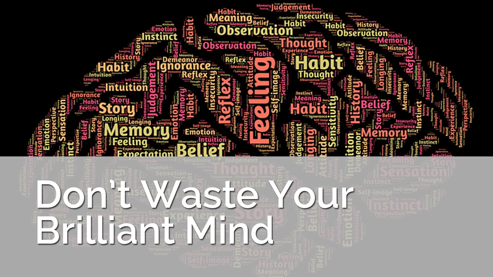 Don't Waste Your Brilliant Mind