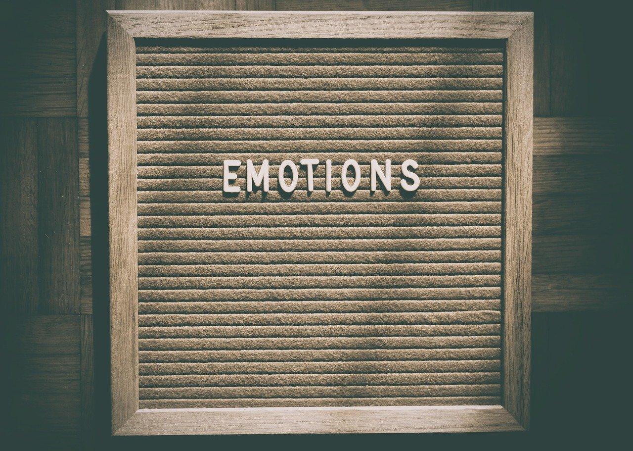 Cómo funcionan las emociones