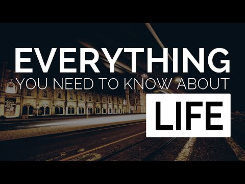 Everything You Need to Know About Life