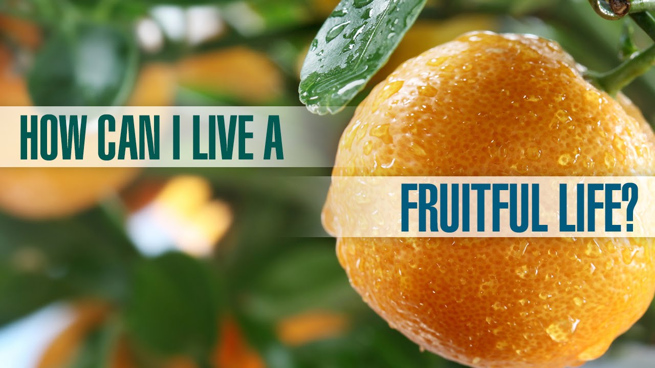 How Can I Have a Fruitful Life?