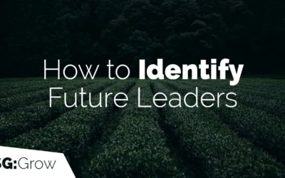 How to Identify Future Leaders