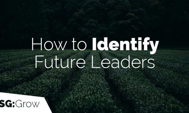 So identifizieren Sie zukünftige Führungskräfte