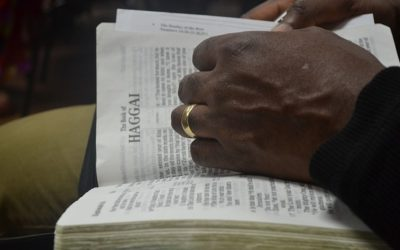 Are There Contradictions in the Bible?