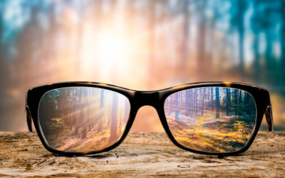 Have Vision or You'll Die