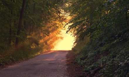 How Many Paths Are There to God?